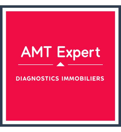AMT EXPERT